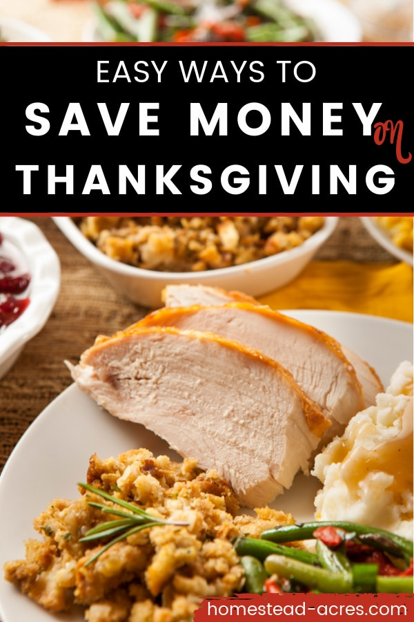 Sliced turkey, stuffing, and potatoes on a plate. Text overlay reads Easy Ways To Save Money On Thanksgiving.