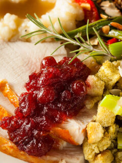 Thanksgiving dinner close up of sliced turkey with cranberry sauce and stuffing.