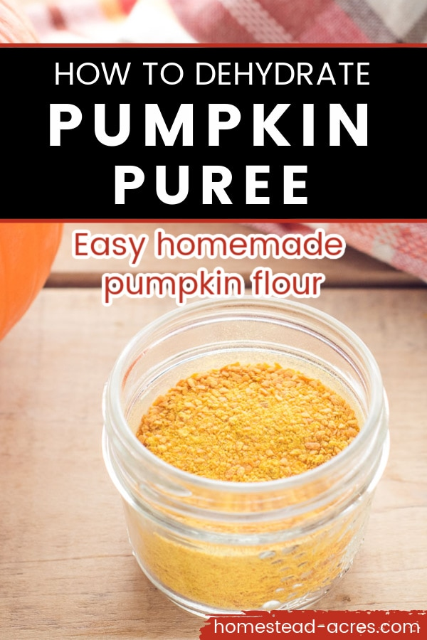 Pumpkin powder in a mason jar on a wooden table. Text overlay reads How To Dehydrate Pumpkin Puree.