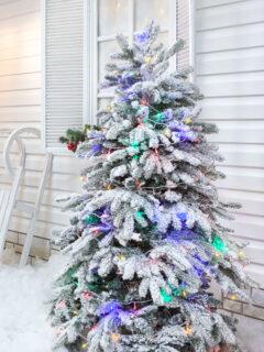 Christmas tree outside next to a white house.