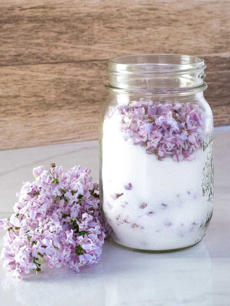 Mason jar of lilac flowers and sugar on a table. Lilac flowers next to the jar.