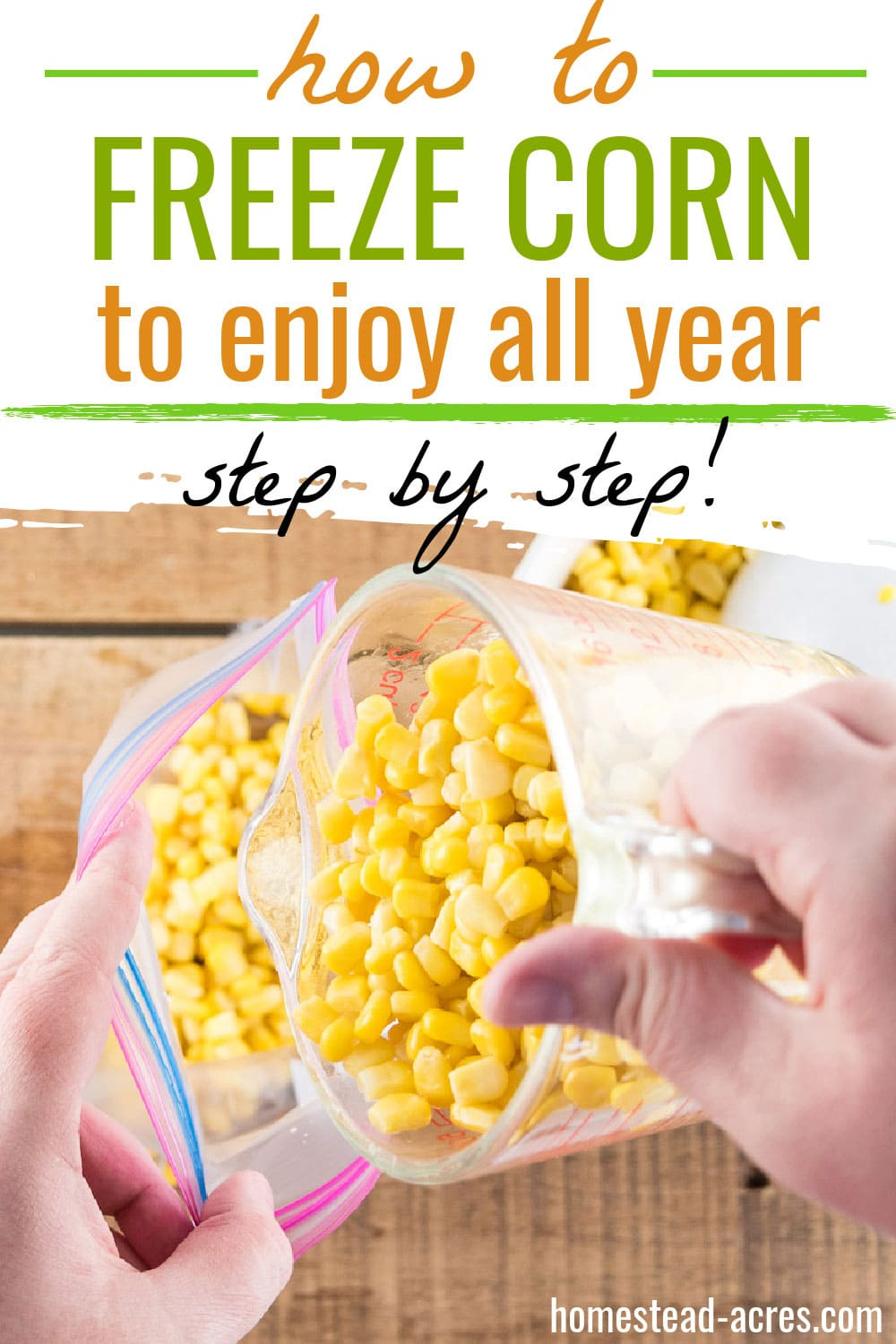 Pouring blanched corn into a freezer bag. Text overlay says How To Freeze Corn To Enjoy All Year Step By Step.
